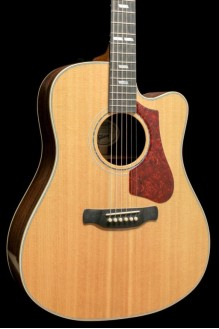 HUMMINGBIRD ROSEWOOD AG Antique Natural 2018